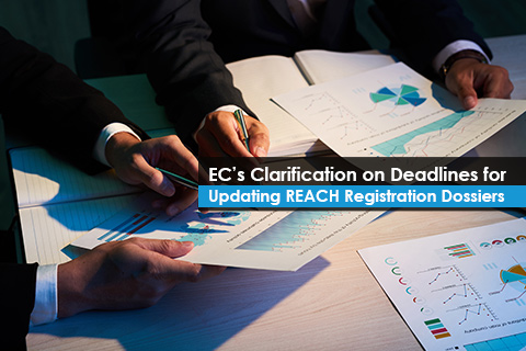 EC's Clarification on Deadlines for Updating REACH Registration Dossiers