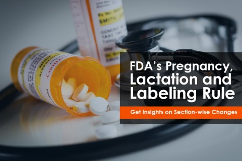Insights on FDA's Pregnancy, Lactation and Labeling Rule (PLLR) Section-wise Changes